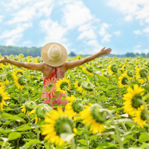 Woman enjoying in sunflower field